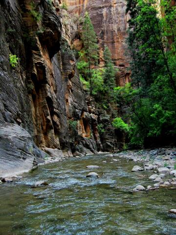 rockytop ranch utah zion nationalpark usa